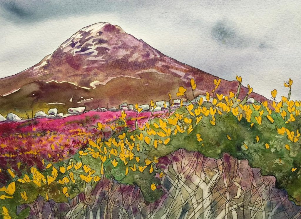 Finished watercolour painting of Snowdonia broom gorse heather mountains watercolorhellip