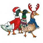 Festive ducks
