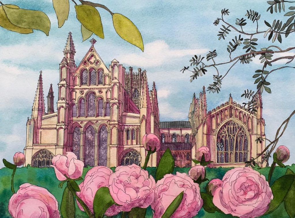Ely Cathedral through the peonies ely elycathedral peonies peony cambridgehellip