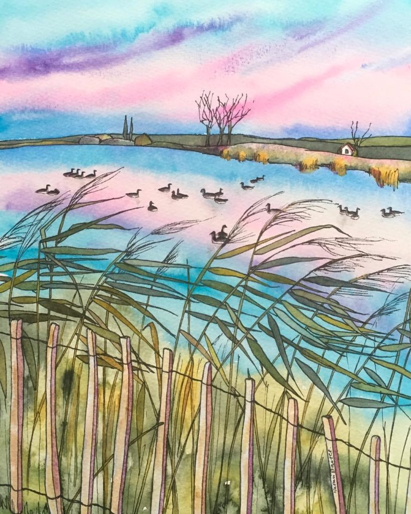 Latest watercolour painting Geese on the lake The view fromhellip